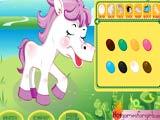 Unique pet pony